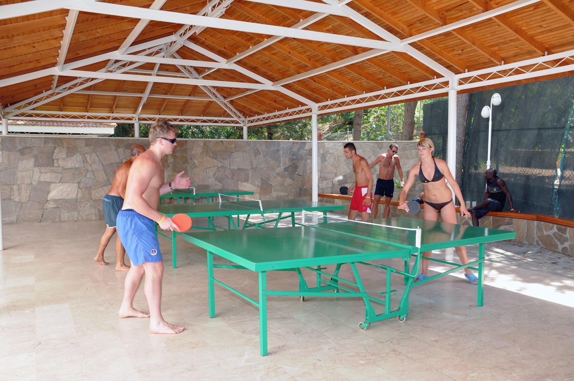 Club Hotel Grand Efe - тенис на маса