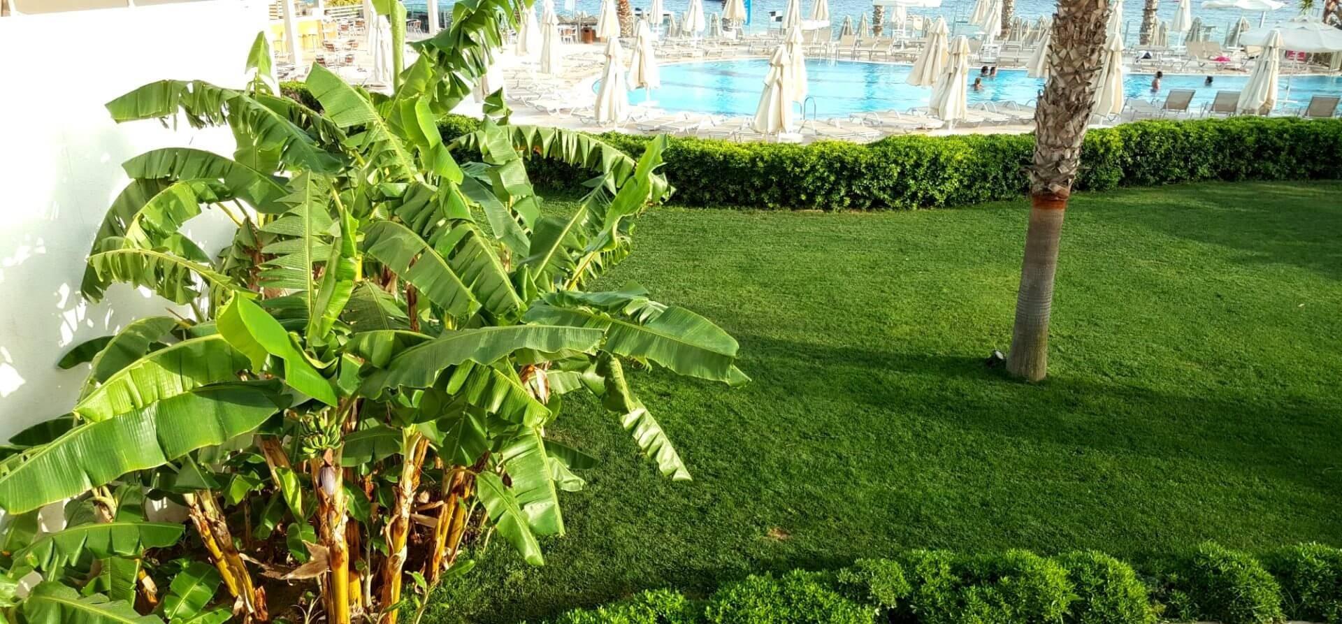 Armonia Holiday Village and Spa - градина