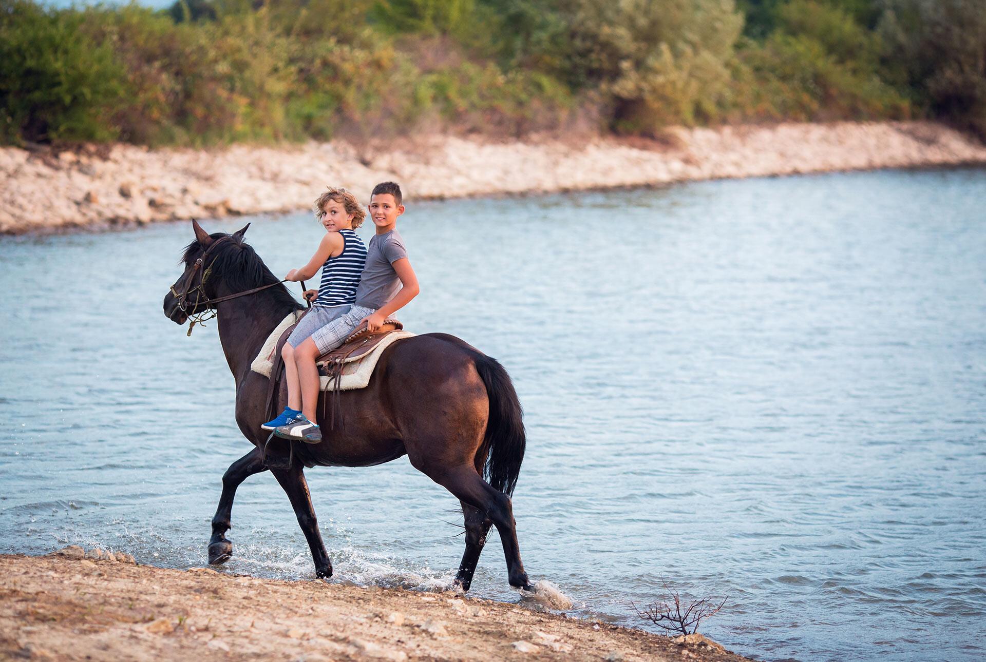 Спа Хотел Аугуста - конна езда